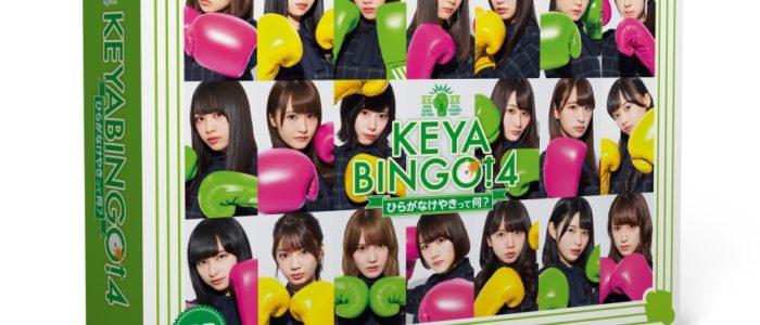 『KEYABINGO!4~ひらがなけやきって何?~』 DVD-BOX(初回生産限定) [ けやき坂46 ]