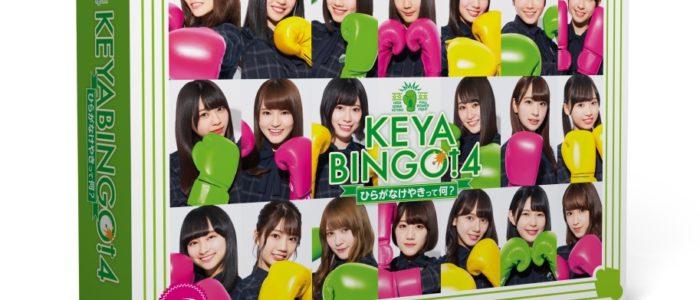 『KEYABINGO!4~ひらがなけやきって何?~』 Blu-ray BOX【Blu-ray】 [ けやき坂46 ]